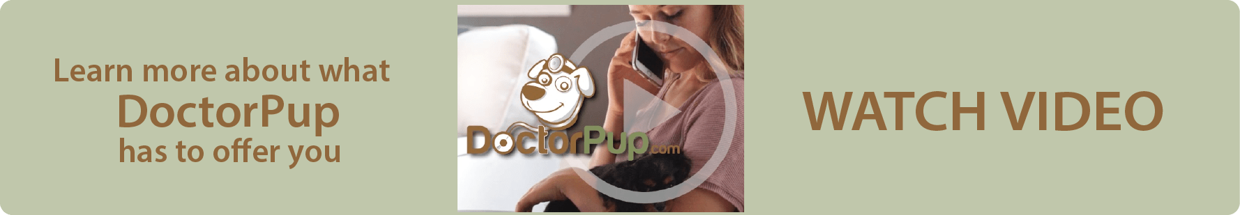 See what DoctorPup can do for you